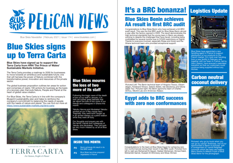 Download the February edition of Pelican News