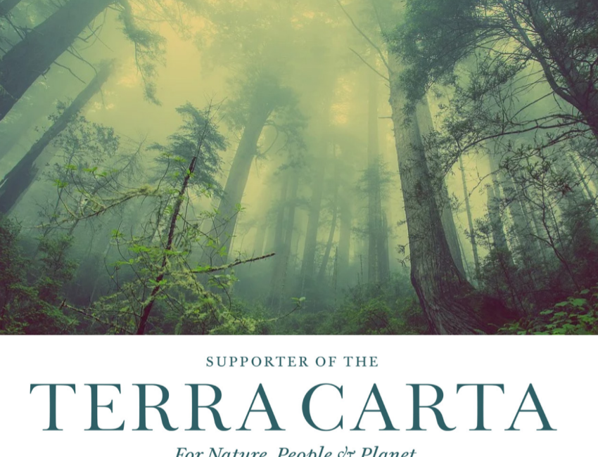 Blue Skies signs up to Terra Carta