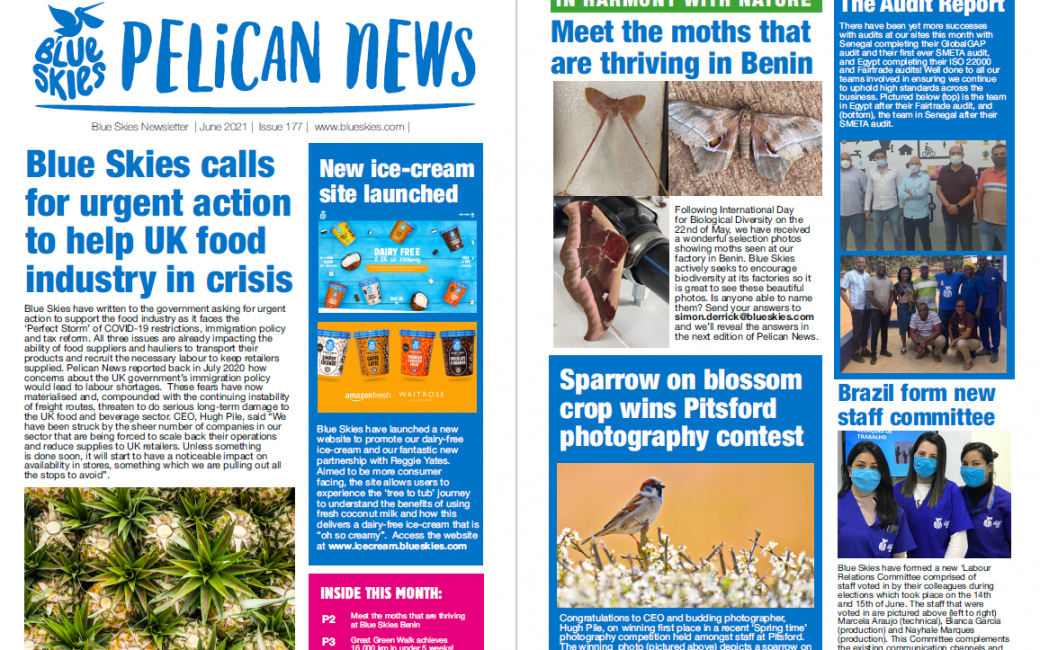 Download the June edition of Pelican News